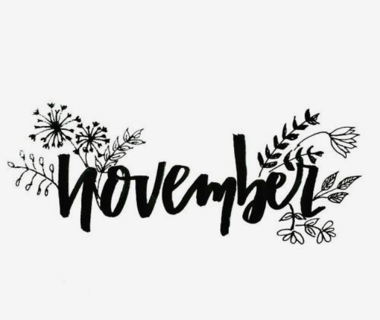 Hi November